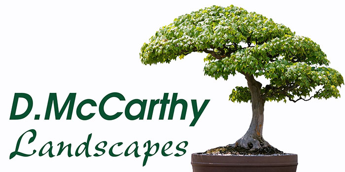 D.McCarthy Landscapes logo